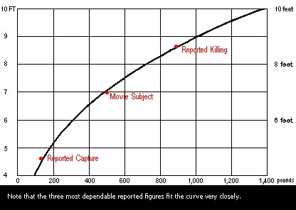 Figure 1. Height and weight curve for sasquatches based on 300 pound body weight at six feet tall.