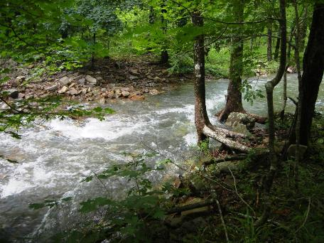 The creek near where Lentz and McClurkan saw a large hairy upright figure in the woods.