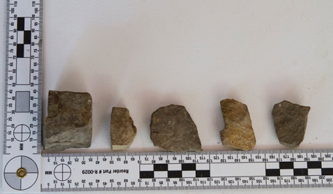 A few of the rocks collected by NAWAC teams from the corrugated metal roofs of camp structures. Photo: Rick Hayes